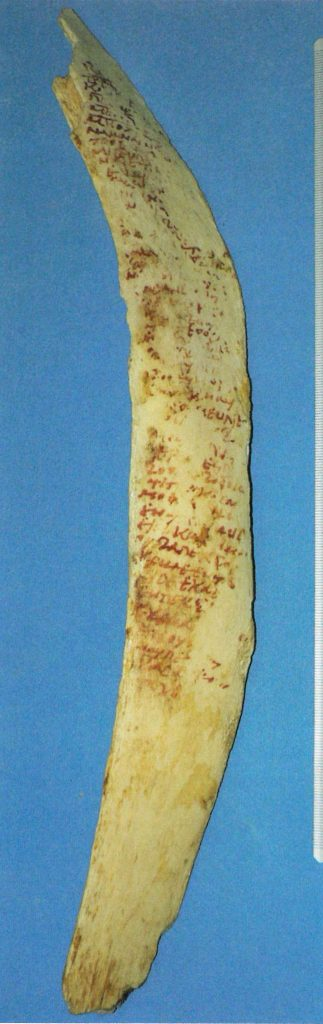 A long thin rib bone, with Coptic text written down its length in a dark red ink.