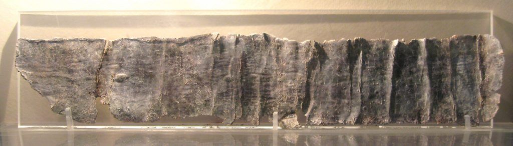 A long, partially damaged, lead sheet, which shows the folds from when it was rolled up. Text is just visible on its surface, but impossible to read at this scale.